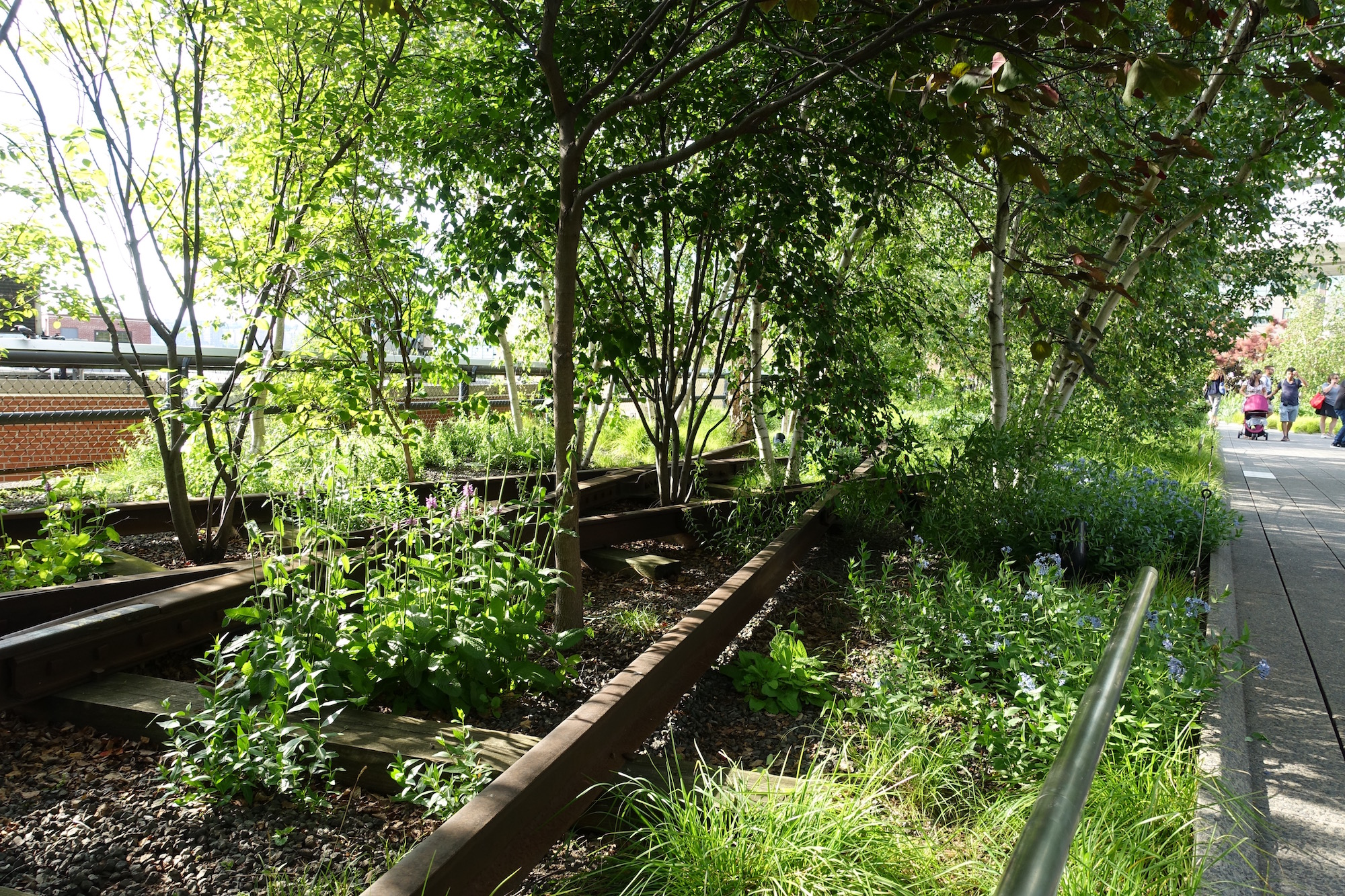 High Line. Photo by Jeanie Lo.